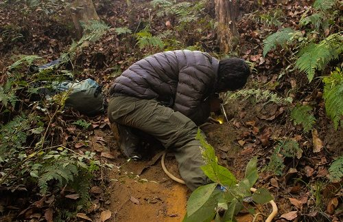 Rufford is supporting Nepal Conservation Research Fellows